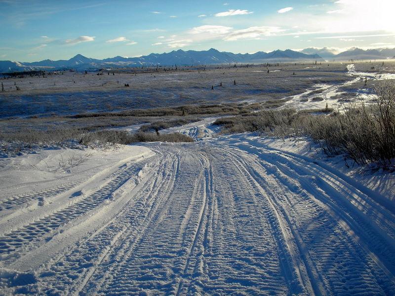 Alaska Winter Trips Iditarod Trail